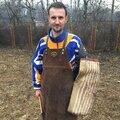 Николай Козлов, Услуги для животных в Городском округе Ярославль