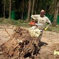 расчистка участка под застройку