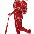 RentScooter, Аренда спортивного инвентаря в Мгинском городском поселении