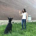Ирина Л., Услуги для животных в Раменском районе