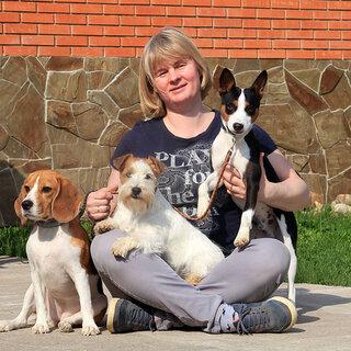 Гостиница для собак Далматин.ру