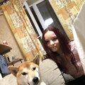 Дарья Крылова, Передержка собак в Промышленном районе