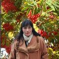 Юлия Силкина, Другое в Губкинском городском округе