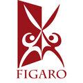 Figaro , Услуги в сфере красоты в Чкаловском