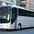 Аренда автобуса MAN LIONS COACH на 49 мест