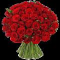 51 роза с доставкой