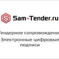 Sam-tender, Комплексное юридическое сопровождение тендеров в Самарской области