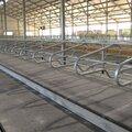 Подбор, поставка и монтаж напольных резиновых покрытий для сельского хозяйства