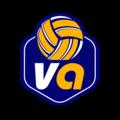 Volleyart, Занятия с тренерами в Гаврилово-Посадском районе