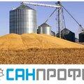 Карантинное фитосанитарное обеззараживание элеваторов, помещений и оборудования зерноперерабатывающих предприятий