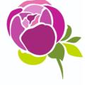 PION.RU Доставка цветов, Доставка цветов в Восточном Измайлово