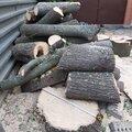 Удаление, спил, валка деревьев