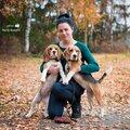 Светлана Тарасова, Передержка собак в Северном административном округе