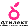 Атилект, Интернет-магазин в Восточном административном округе