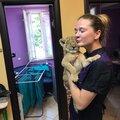 Анастасия Иванова, Стрижка когтей животным в Одинцово