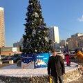 Александр Павлович, Демонтаж электросети в Москве и Московской области