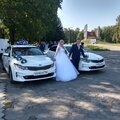 Автомобили: Kia Optima