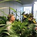 Марина Холопова, Услуги озеленения в Санкт-Петербурге