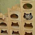 Изготовление домиков для кошек под заказ.
