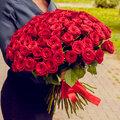Букет из 71 розы (60см)