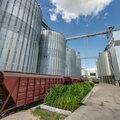Аэрозольно-газовая дезинсекция силосов, газация хопперов, зерновых