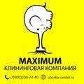 Андрей Клин, Химчистка мягких игрушек в Артёмовском городском округе