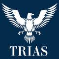 Студия Триас, Редизайн сайта в Южнопортовом районе