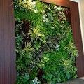 Искусственное озеленение в Екатеринбурге