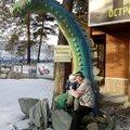 Михаил Винский, Кладка печей и каминов в Новосибирске
