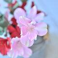 ClayFlowers Цветы из глины, Изделия ручной работы на заказ в Тюменской области