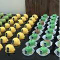Брендированные сладости для корпоративных мероприятий, выставок, фуршетов