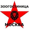 Зоогостиница Москва, Передержка кошек в Западном административном округе