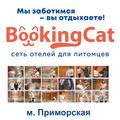 BookingCat м. Приморская, Передержка птиц в Смольнинском