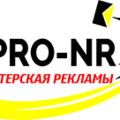 Pro-nr, Баннер в Снежинском городском округе