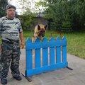 Михаил Родионов, Передержка животных в Раменском районе