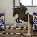 Занятие по конному спорту: индивидуально – 2 варианта