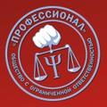 Профессионал, Юридическое представительство в судах общей юрисдикции в Городском округе Воронеж