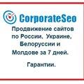 CorporateSeo, SEO-продвижение в Муниципальном образовании Екатеринбург