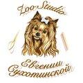 Zoo-studio Евгении Сухотинской, Услуги для животных в Малоярославце