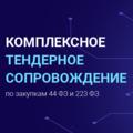 Тендерный Консалтинг, Помощь юристов в получении электронной цифровой подписи в Пермском районе
