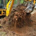 Корчевание дерева