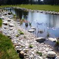 Создание искусственного водоема