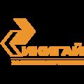 Агентство Икигай, Разработка систем автоматизации электронного документооборота в Ливадии