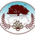 Мелодия Ландшафта, Устройство посевного газона в Городском округе Химки