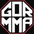 Школа ММА, Занятия с тренерами в Юго-западном административном округе