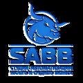SABB, Заказ сайтов под ключ в Воронежском сельском поселении