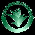 Компания Рулонные газоны, Устройство рулонного газона в Москве