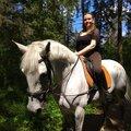 Занятие по конному спорту: индивидуально – 3 варианта