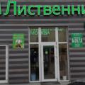 Лиственница Москва, Сруб из бревна в Городском округе Ликино-Дулёво