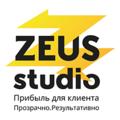 ZEUS.studio, Настройка Яндекс.Директа в Нижнем Тагиле